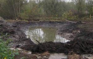 болотные почвы, требуют осушения чтобы их использовать