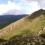горно-луговые почвы расположены в высокогорных районах