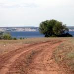 каштановая почва Таманского полуострова