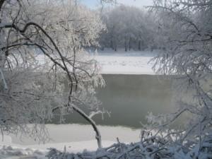 кубань в феврале, бывает очень холодно