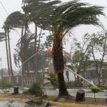 штормовой ветер в Сочи не редкость