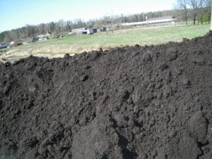 черноземные почвы самые богатые почвы