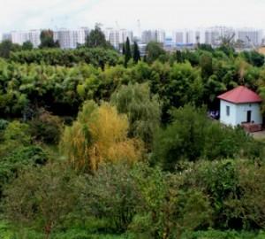 Олимпийская деревня адлер