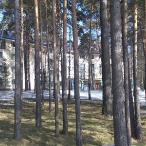 Базы отдыха Челябинской области