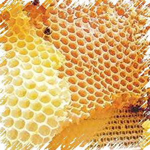 Воск – важный продукт пчеловодства