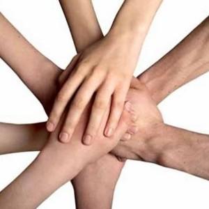 Как выбрать благотворительный фонд для совершения пожертвований?