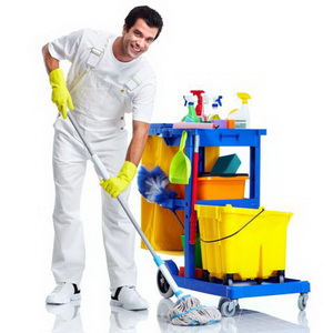 Профессиональная уборка - чем ее делать?