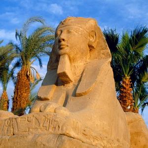 Туры в Египет - как быть туристам?
