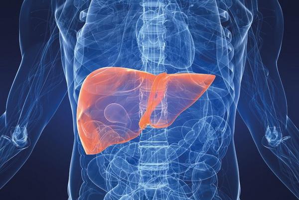 Последствия гепатита С: риски и прогнозы хронического течения болезни