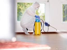 Проведение дезинфекции в квартире