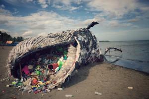 Все о загрязнении океанов